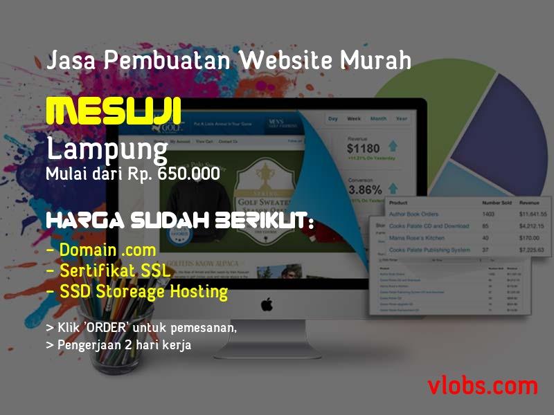 Jasa Pembuatan Website Murah Di Mesuji - Lampung