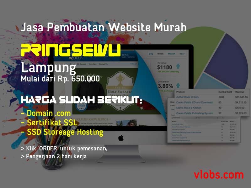 Jasa Pembuatan Website Murah Di Pringsewu - Lampung