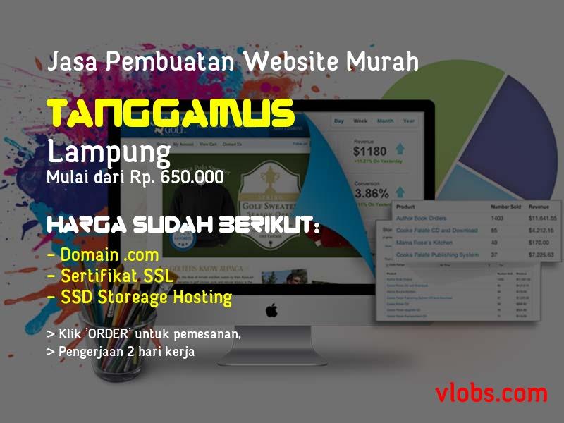 Jasa Pembuatan Website Murah Di Tanggamus - Lampung
