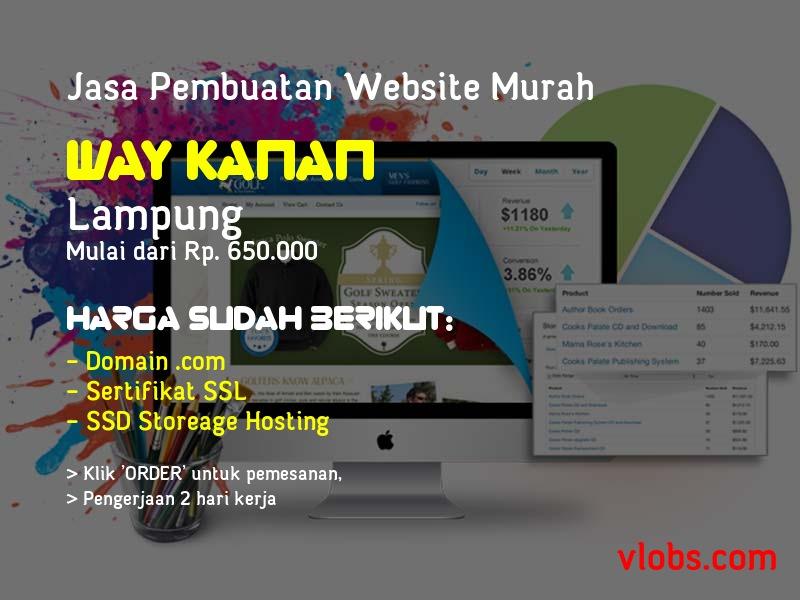 Jasa Pembuatan Website Murah Di Way Kanan - Lampung
